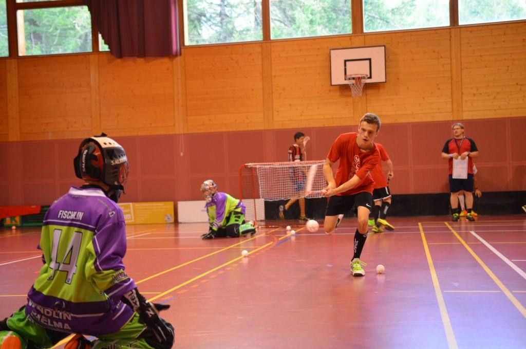 Lieblingsbeschäftigung: Training mit Stock und Ball in der Halle